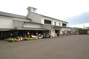 菅原鮮魚店2